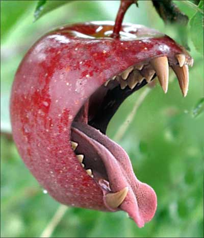 bite_of_apple